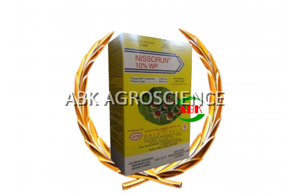 ACM NISSORUN 10%WP 250GM