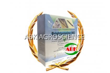 BRIGHTONMAX BRIGHTOSPEINE WG (500GM)